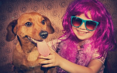 6 Tips To Pet Proof Your Home
