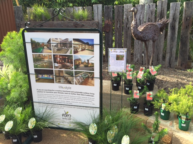Garden display in Carseldine, Brisbane © GreenSocks