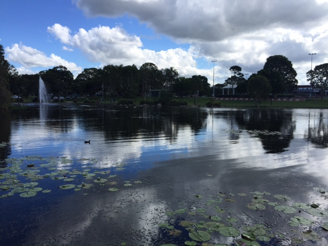 Centenary Lakes, Caboolture, Brisbane, lawn mowing Brisbane, Caboolture lawn mowing, lawnmowing, GreenSocks