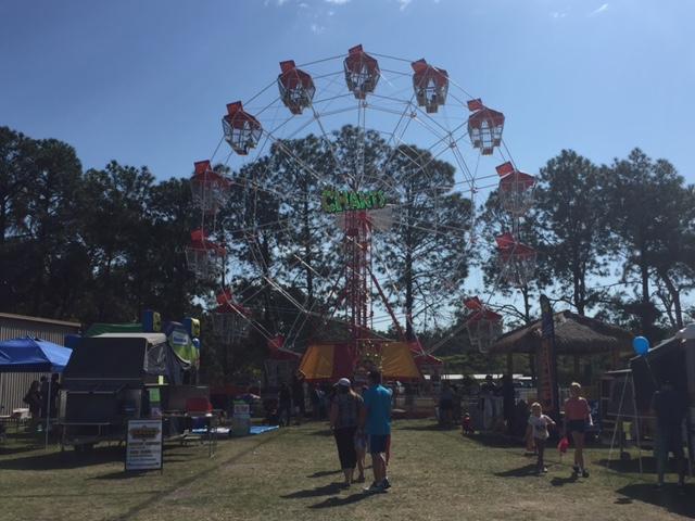 Ferris Wheel ride at the Farm Fantastic Expo, Caboolture © GreenSocks