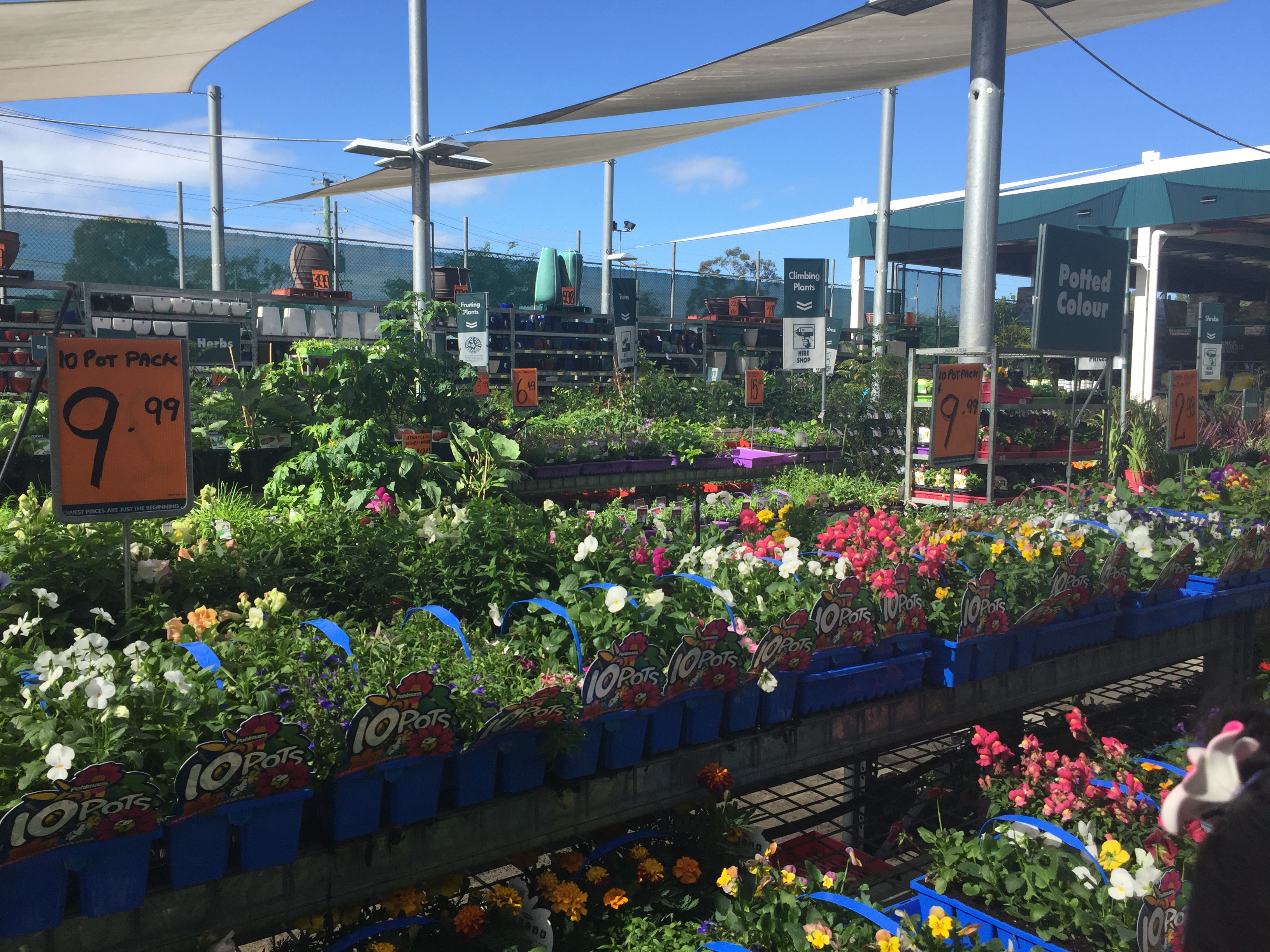 Need flowers? Yes, you guessed it, you can get those at Bunnings Morayfield too! © GreenSocks