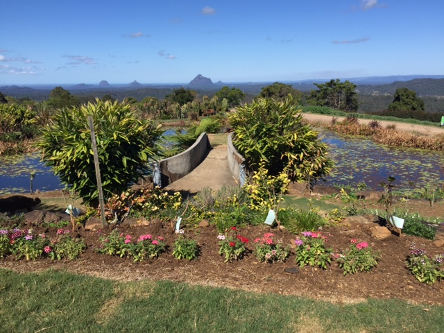 More views of the Glasshouse Mountains at the Maleny Botanic Gardens © GreenSocks