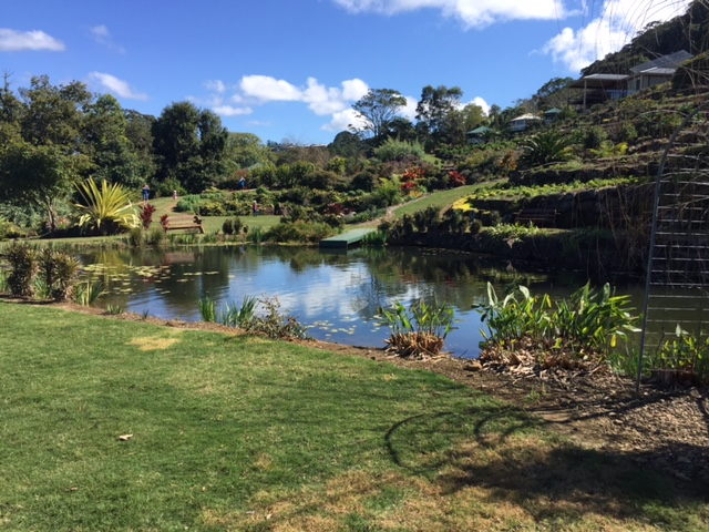 Maleny Botanic Gardens: In Top 6 for Asia Pacific?