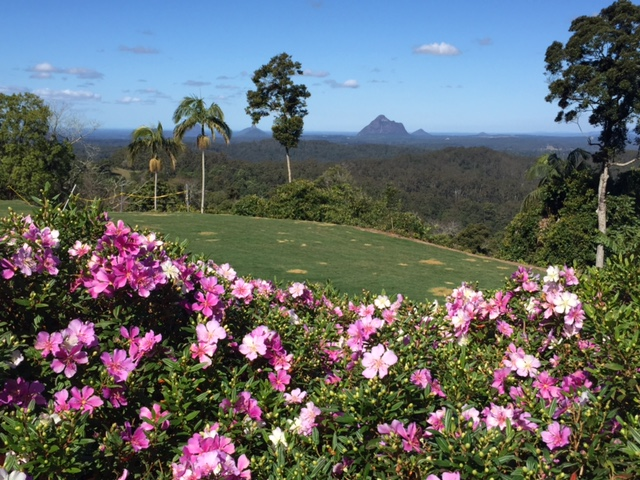 Look at the views you'd get if you mowed the lawn at Maleny Botanic Gardens! © GreenSocks