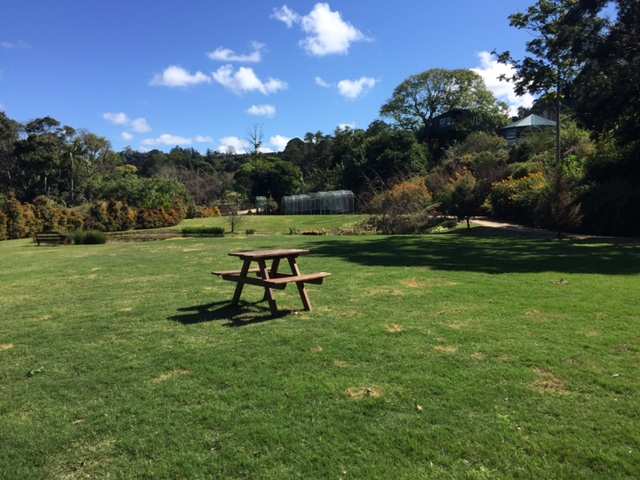 More lawns to mow at the Maleny Botanic Gardens, Sunshine Coast! © GreenSocks