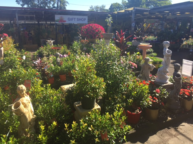 Theo's Garden Centre Kallangur © GreenSocks