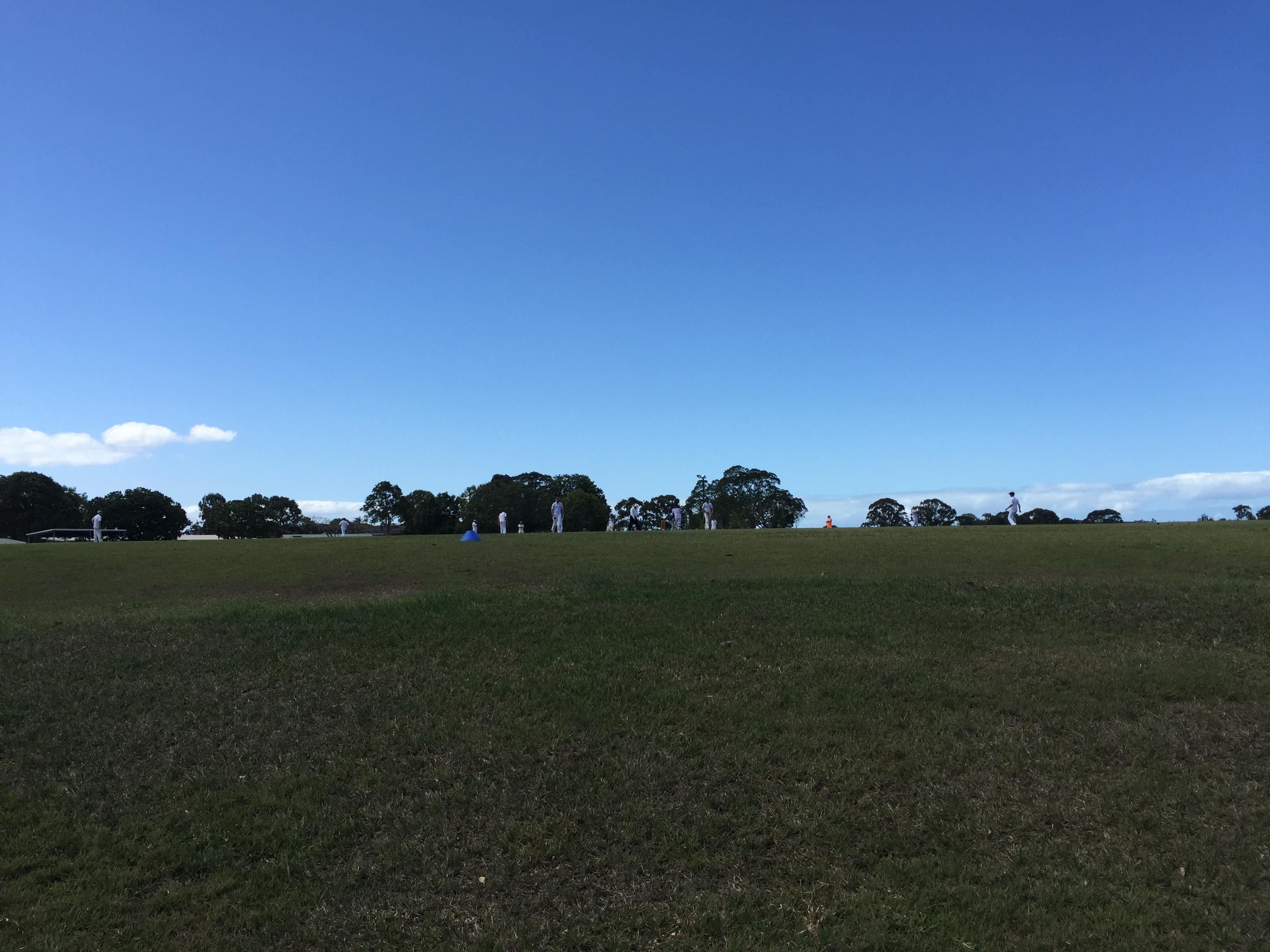 lawn mowing-aspley-marchantpark-4