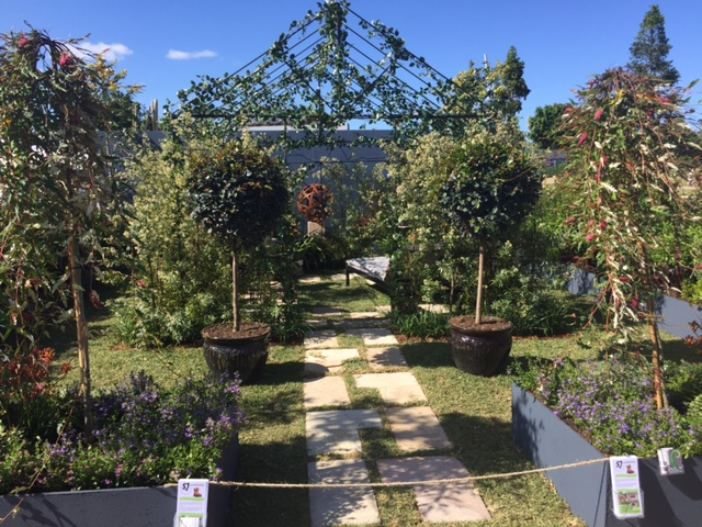Brisbane Garden Show Winners 2015 © GreenSocks