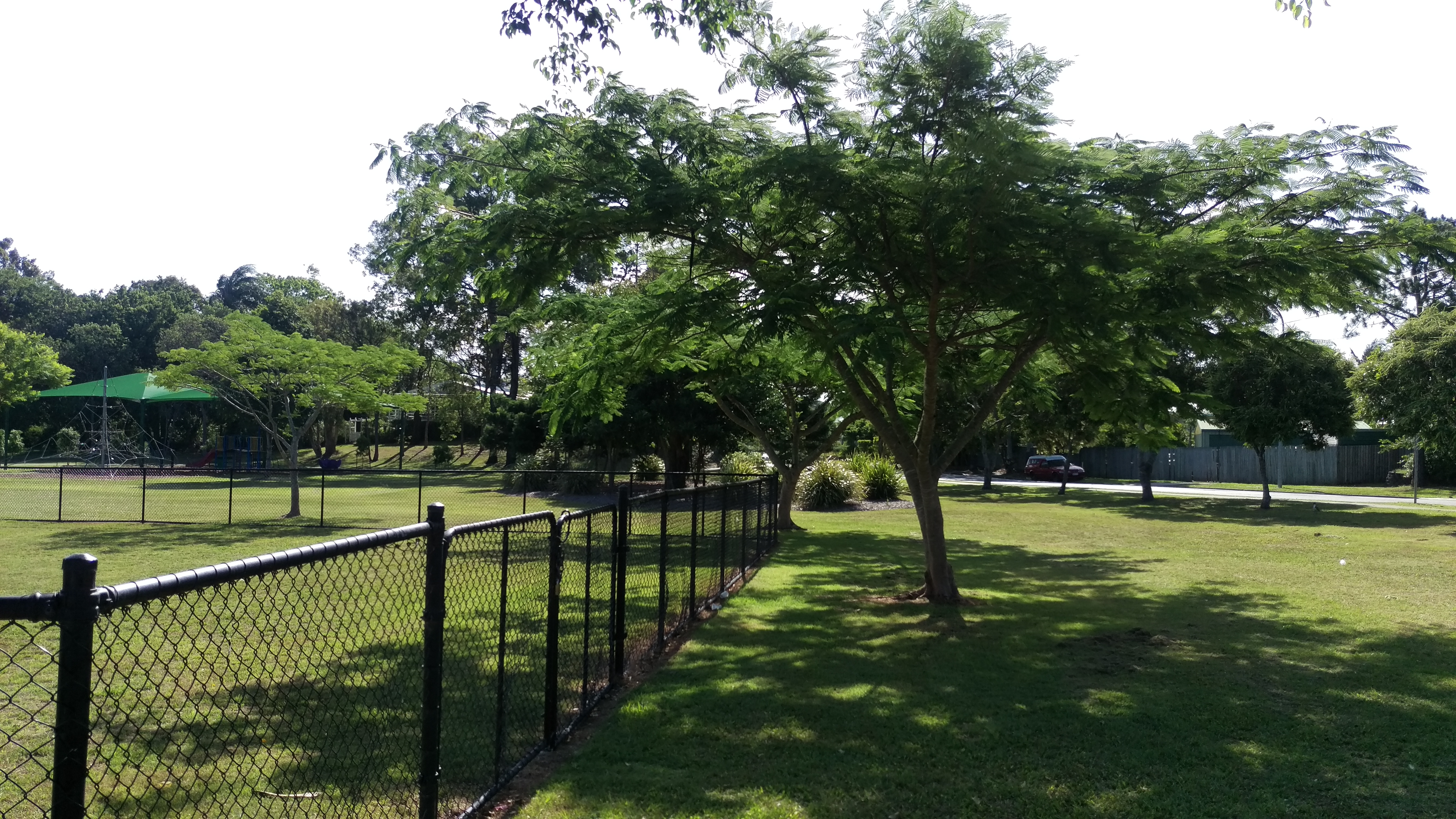 Beautiful lawn maintenance by the Brisbane City Council at Wavell Heights parks © GreenSocks