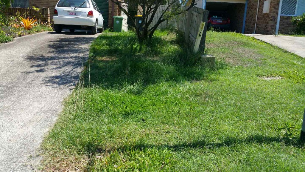 """Before"" photo - Caloundra West lawn services, Sunshine Coast © GreenSocks"