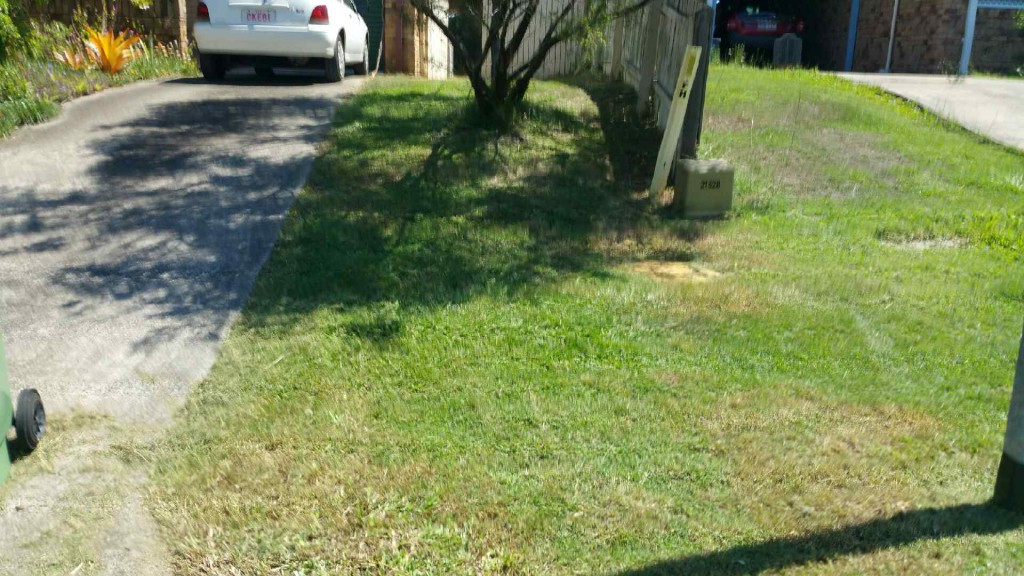 """After"" photo - Caloundra West lawn services, Sunshine Coast © GreenSocks"