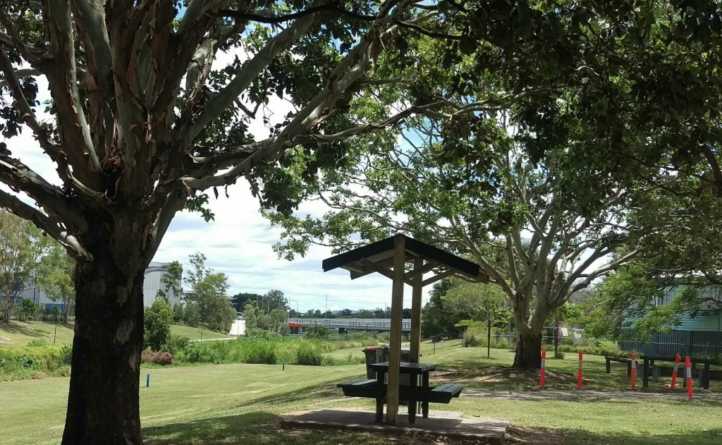 Stop for a picnic in Mercer Park while we get your lawn mowed in Kedron? © GreenSocks