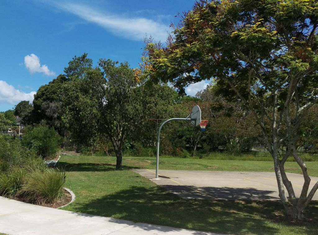 Get GreenSocks to organise your Geebung lawn mowing so you can go shoot hoops! © GreenSocks