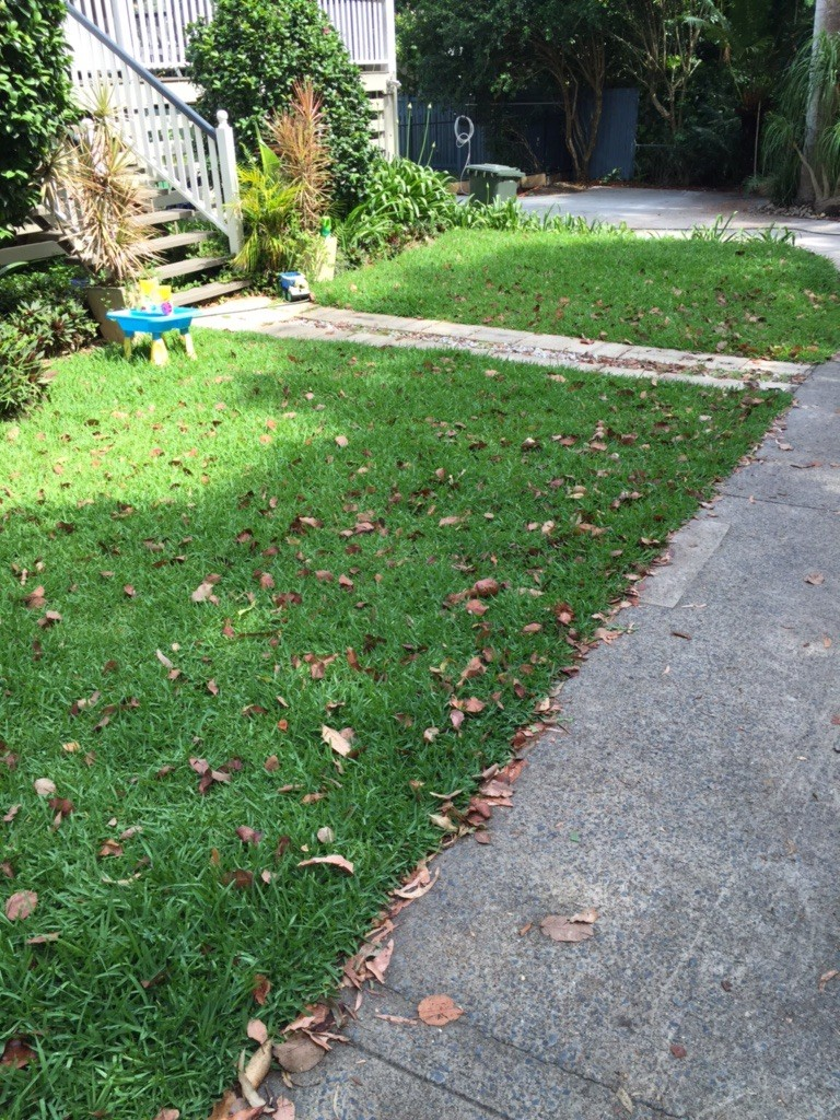 Before Malcolm Tuttle's awesome Wooloowin mowing services © GreenSocks