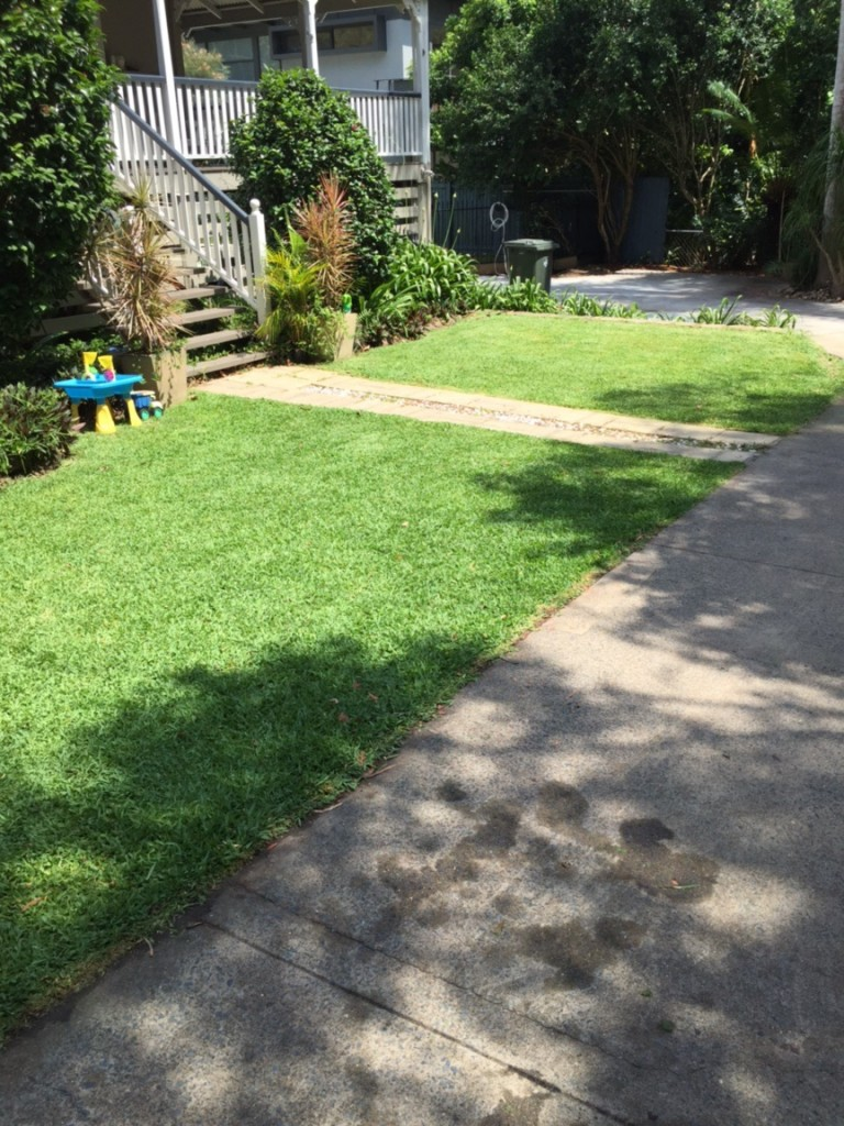 After Malcolm Tuttle's awesome Wooloowin mowing services © GreenSocks