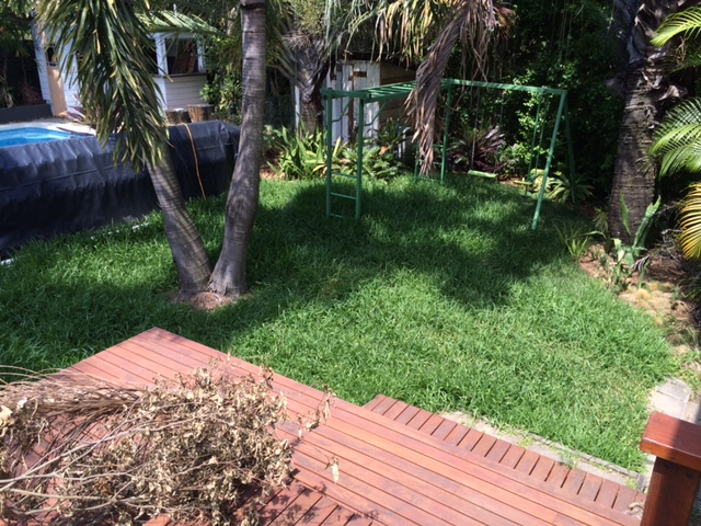 """Before"" photo of a lawn mowed in Newmarket © GreenSocks"