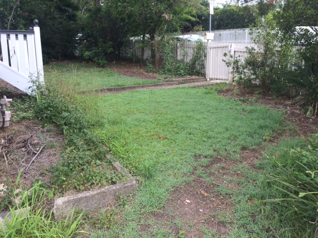 """Before"" photo of a lawn mowed in Windsor © GreenSocks"