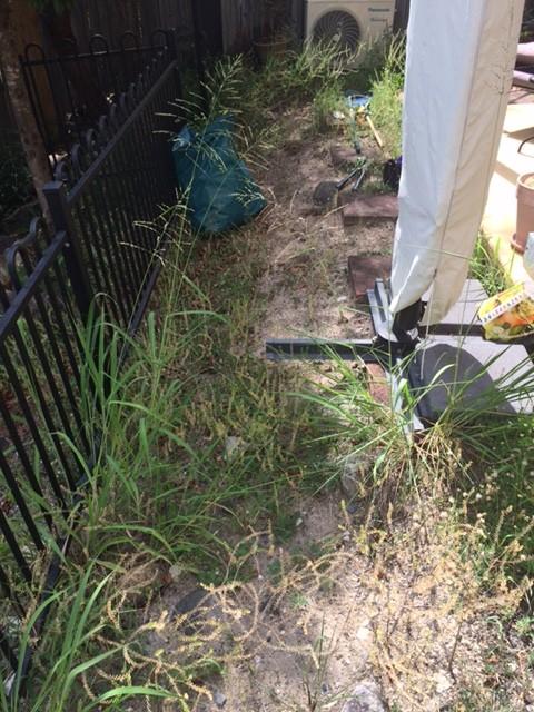 """Before"" photo of weeding job in Riverhills © GreenSocks"