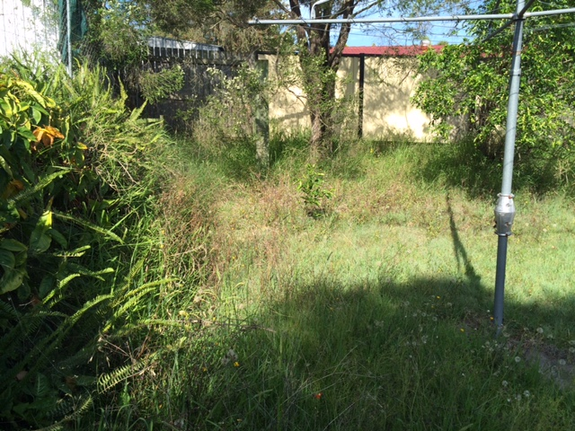 """Before"" photo - Durack yard clean ups and lawn mows - © GreenSocks"