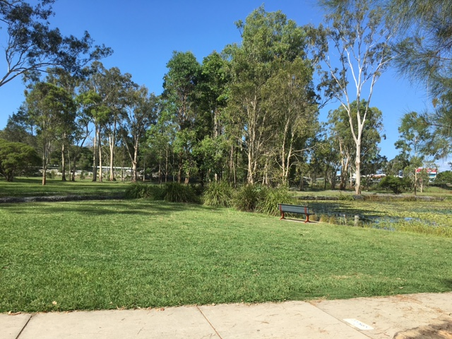 Enjoy the green lawns of Capalaba Regional Park © GreenSocks