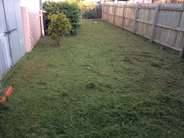 """After"" photo - Inala yard clean ups and lawn mowing - © GreenSocks"
