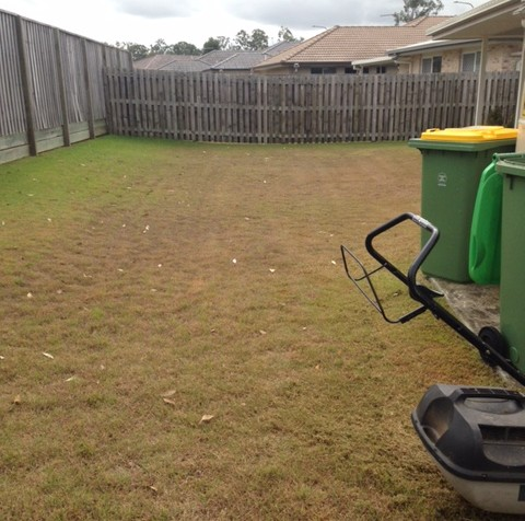"""Before"" photo of Augustine Heights mowing © GreenSocks"