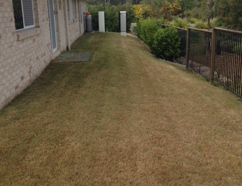 """After"" photo of Augustine Heights mowing © GreenSocks"