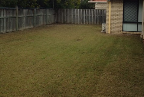 """""""After"""" photo of Springfield mowing services © GreenSocks"""