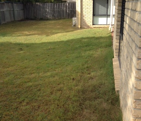 """""""Before"""" photo of Springfield mowing services © GreenSocks"""