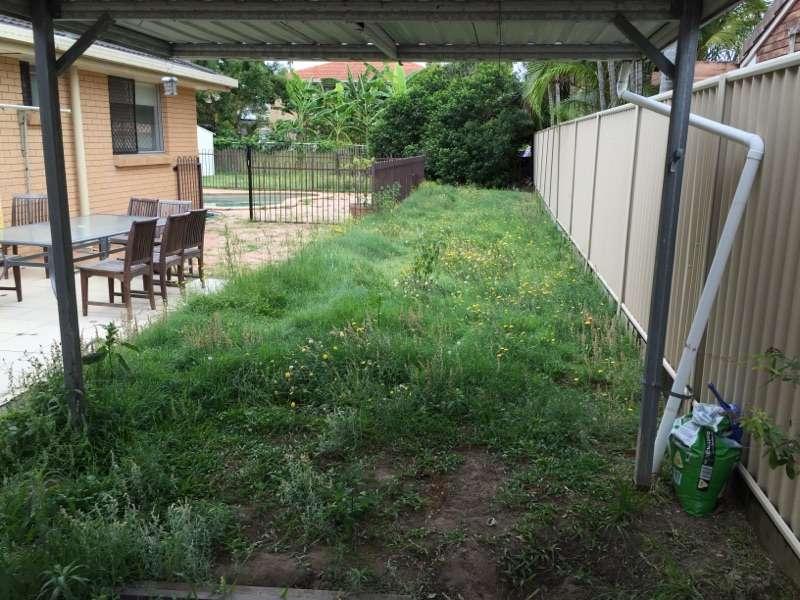 """Before"" photo of Mermaid Waters lawn care services © GreenSocks"