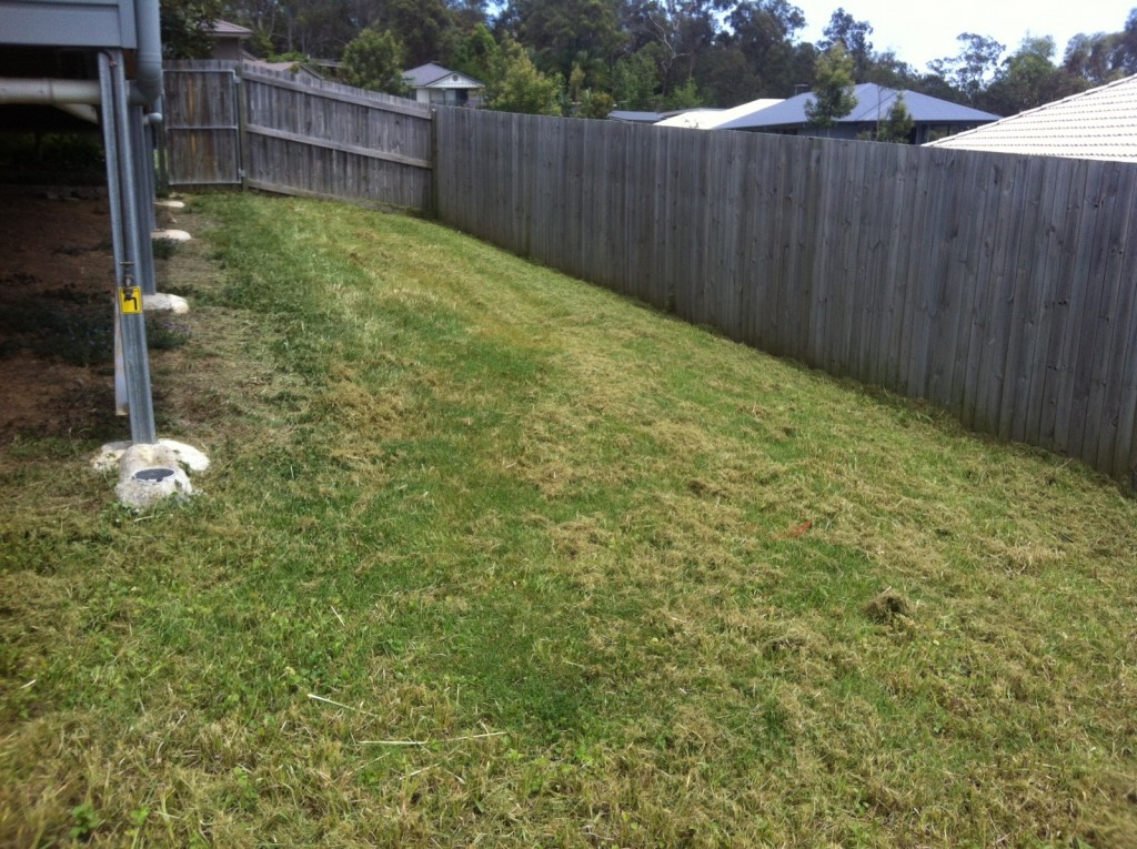 "A sample ""after"" photo of the Goodna lawn mowing jobs our providers service © GreenSocks"