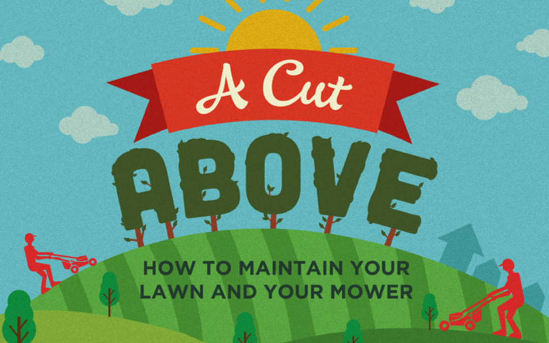 6 Best Ways to Maintain Your Lawn Mower