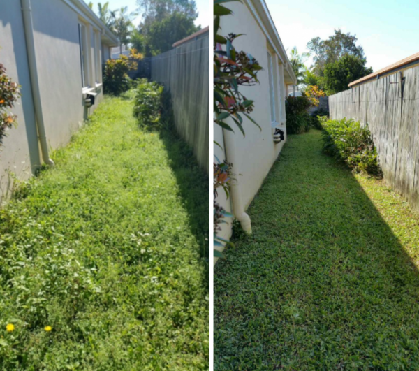 """Before"" and ""After"" photo of Mudjimba lawnmowing © GreenSocks"