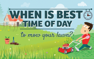 Best Time to Mow the Lawn?