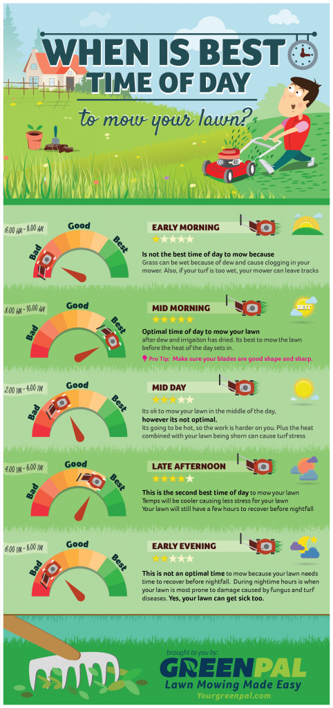 Best time to mow the lawn (Infographic by YourGreenPal.com)