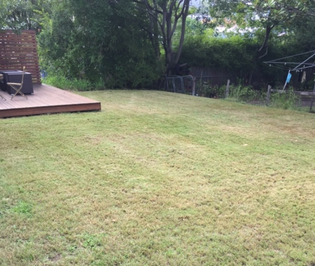 """After"" photo of Albion lawn mowing © GreenSocks"