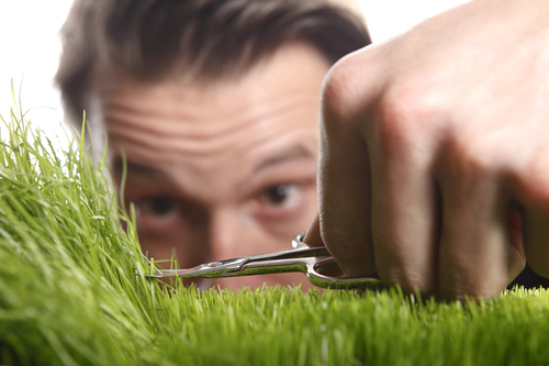 Sharpen your mower blades - something to do in your mowing business when it's raining!