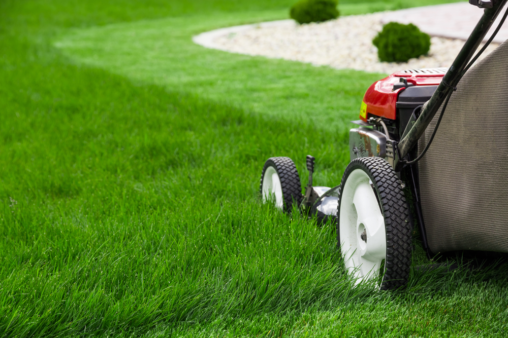 10 Mistakes To Avoid When Starting a Mowing Business