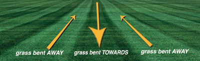 Lawn Striping: How to mow stripes in your lawn (Image credit: Scag.com)