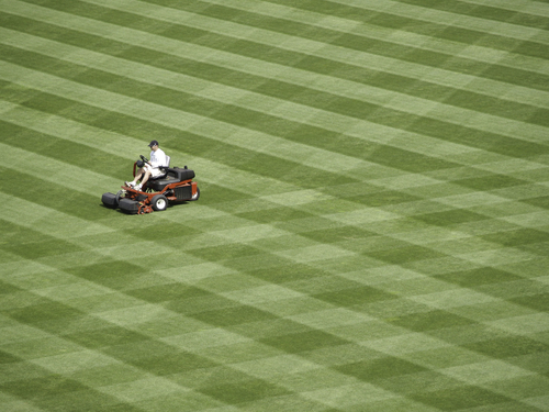 Lawn Striping: How Do I Mow Stripes in The Lawn?