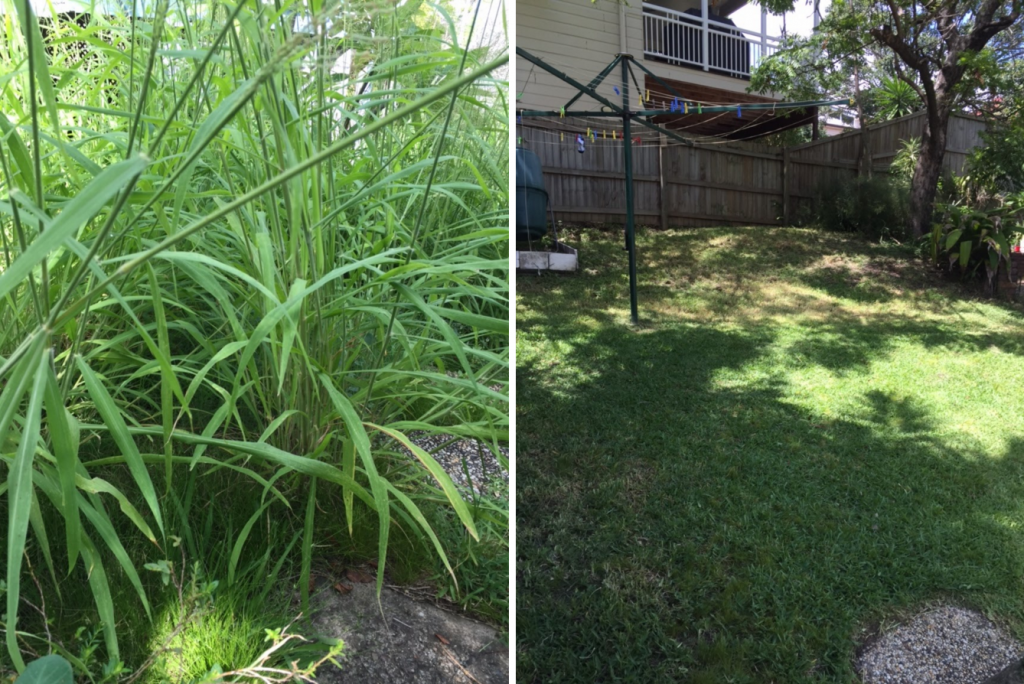 """Before"" and ""after"" photo of Red Hill lawnmowing services © GreenSocks"