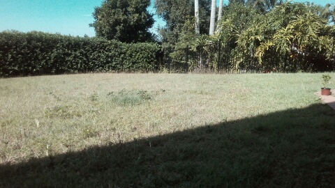 Before Photo - Brookfield Lawn Care © GreenSocks