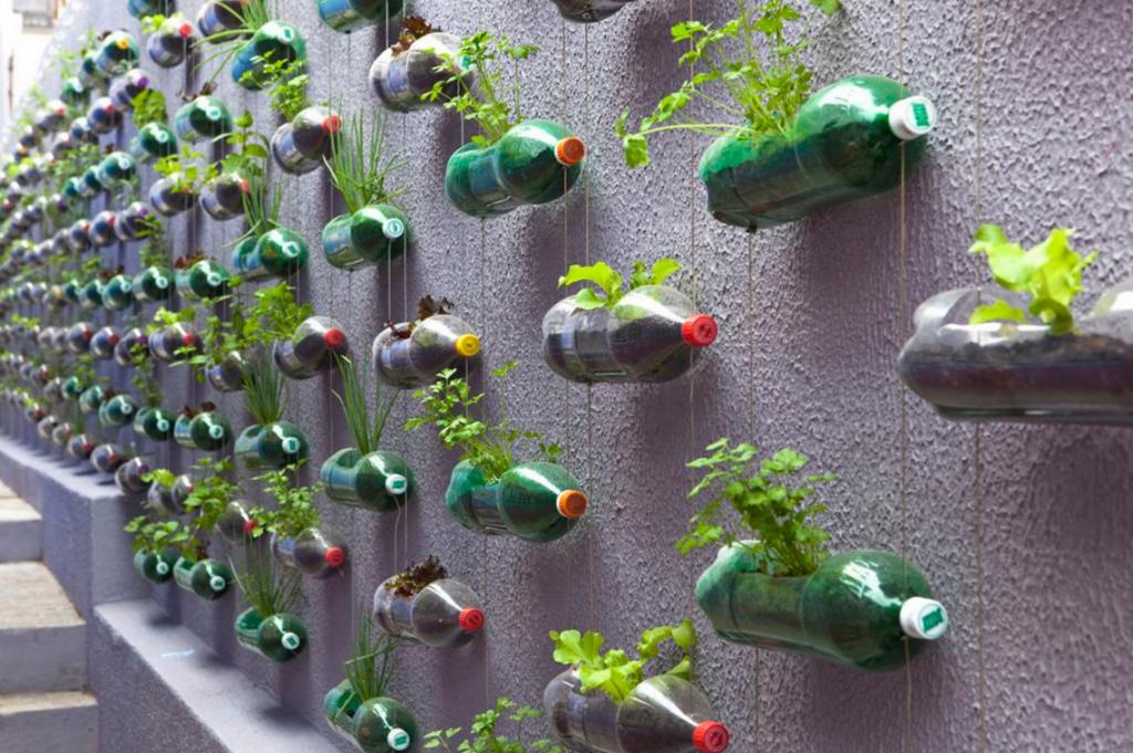 Herb garden fence Brazil (Image credit: FoodNewsie)