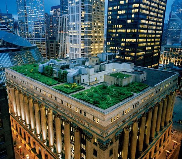 The Ultimate DIY Rooftop Garden Guide